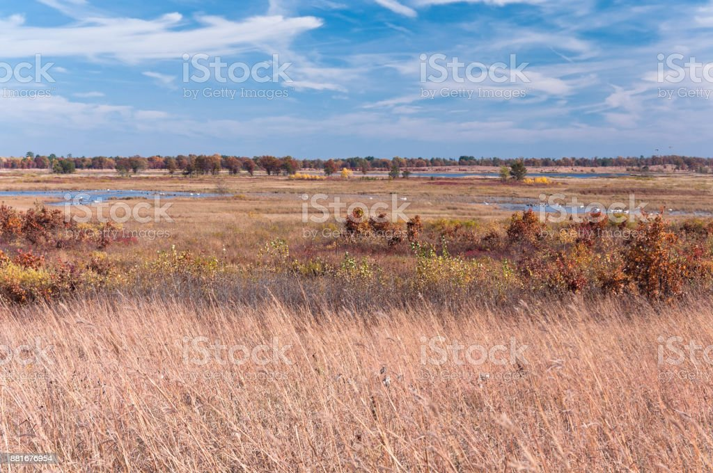 Prairie Grasses and Wetlands of Necedah stock photo