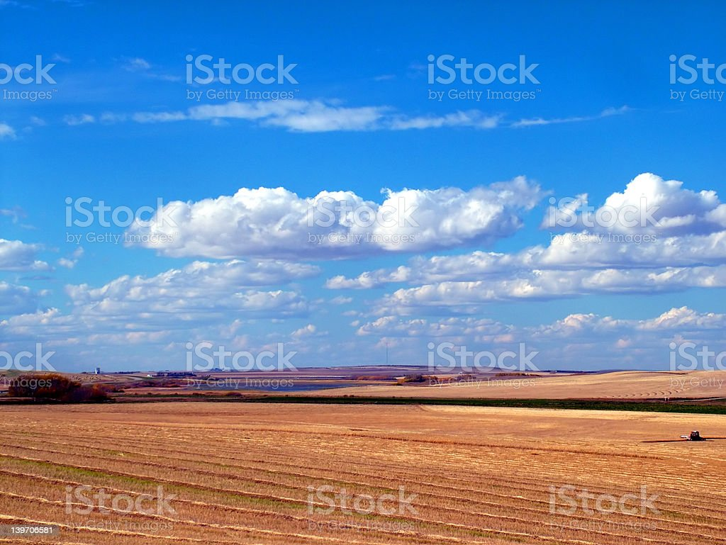 Prairie Harvest royalty-free stock photo