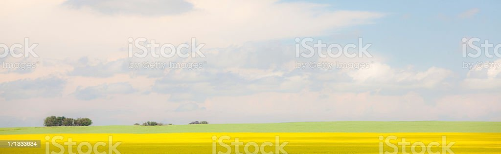 Prairie Horizon stock photo