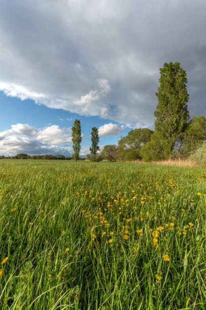 prairie dans la campagne française - orage en alsace photos et images de collection