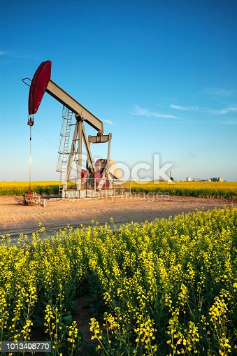 Pump Jacks working out in Weyburn Saskatchewan, Canada. image taken from a tripod.