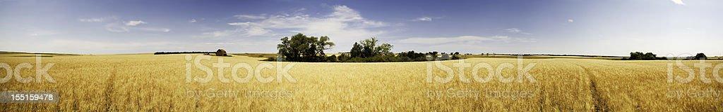 Prairie Panorama stock photo
