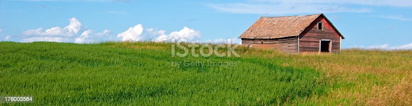 Green fields and farm landscape