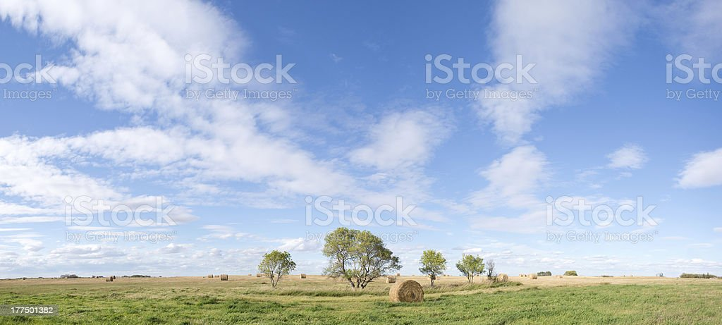 Prairie panorama with hay bales in field against blue sky stock photo