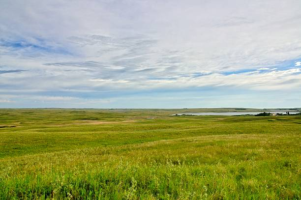 prairie pothole wildlife area - great plains stock photos and pictures