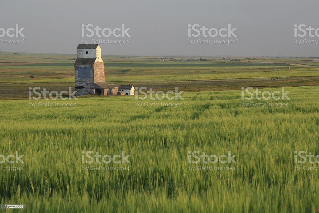 Prairie Relic royalty-free stock photo