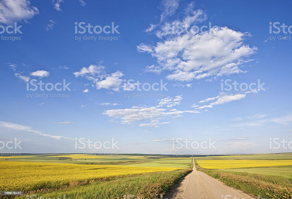 Prairie Road Through the Great Plains stock photo