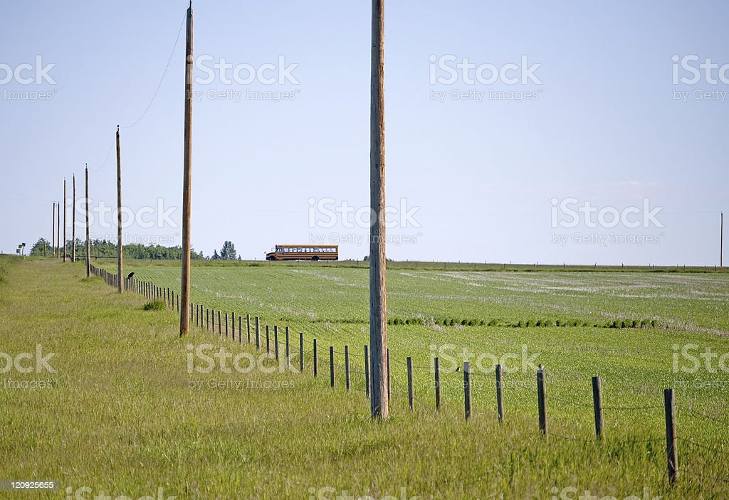 Prairie school bus- distant with emerging crops royalty-free stock photo