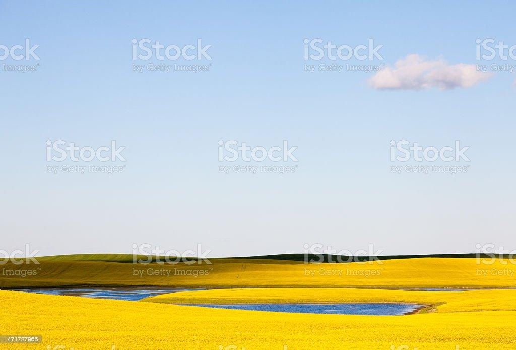 Prairie Sky royalty-free stock photo