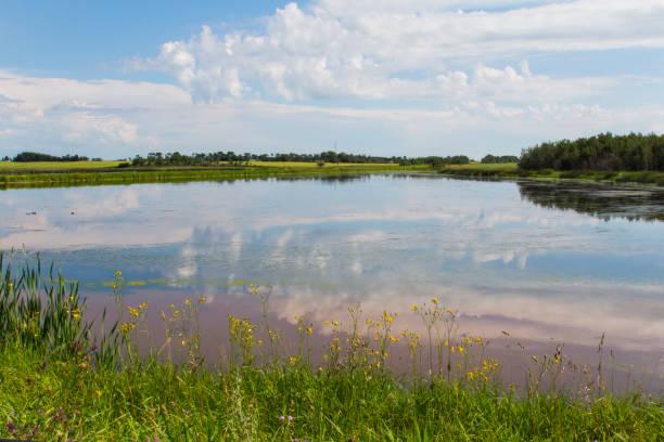 Prairie Slough stock photo