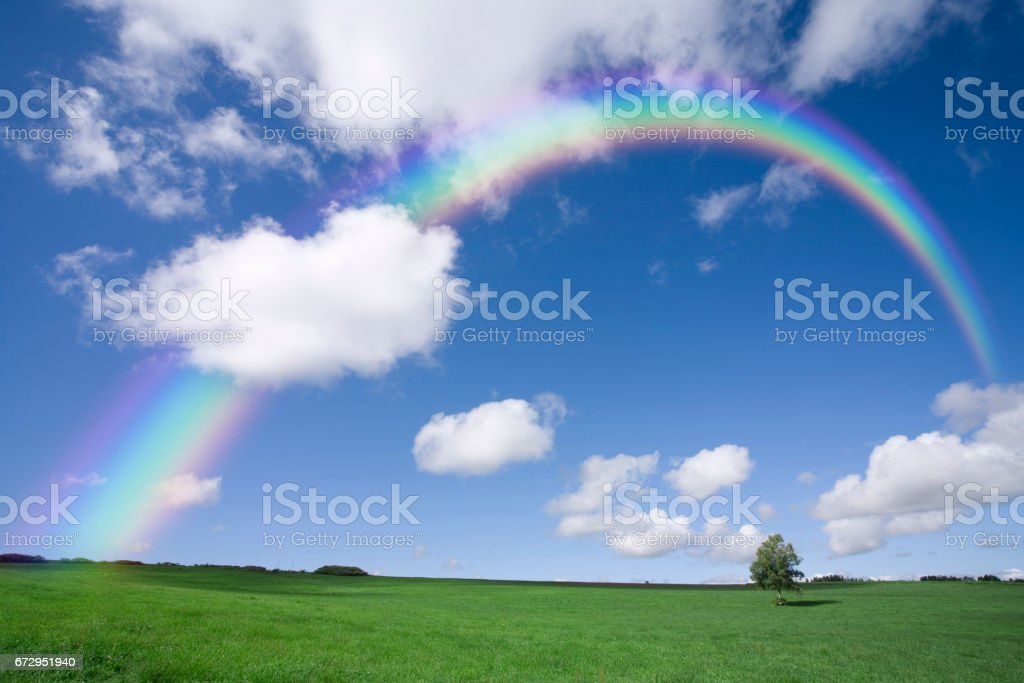 Prairie tree and Rainbow stock photo