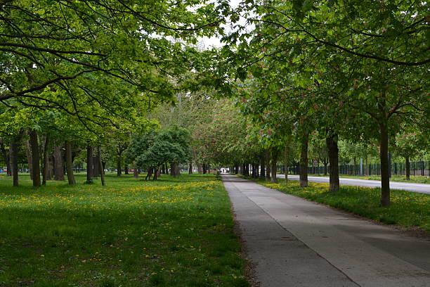 Prater Park in Vienna stock photo