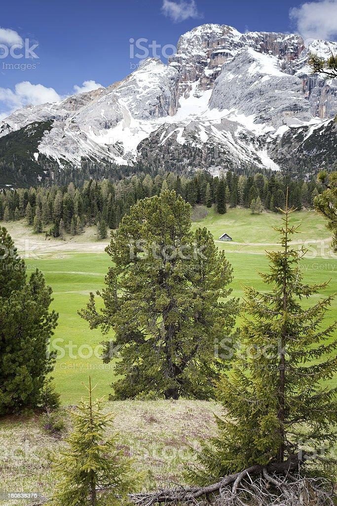 Prato Piazza, Plaetzwiese. Alto Adige, Dolomites royalty-free stock photo