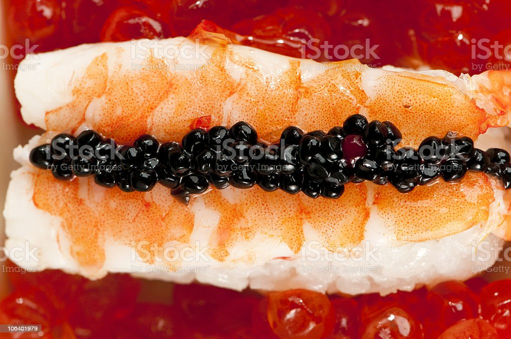 Prawn nigiri  sushi with  black roe on salmon eggs. royalty-free stock photo