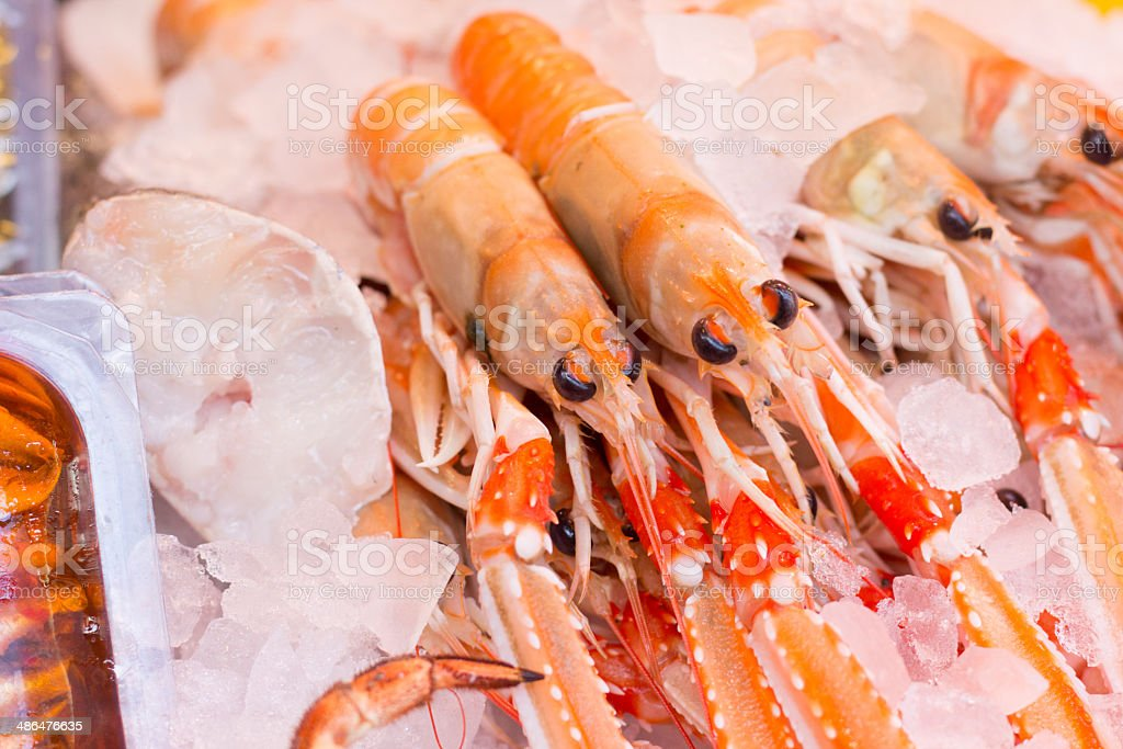 Prawns in Borough Market, London royalty-free stock photo