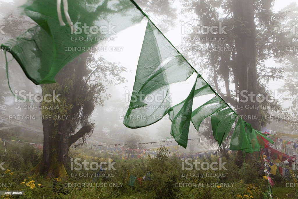 Prayer flags in the misty woods surrounding Dochu La foto