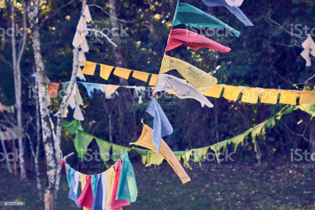 Prayer Flags Of Tibetan Buddhism Tied In The Trees In Them
