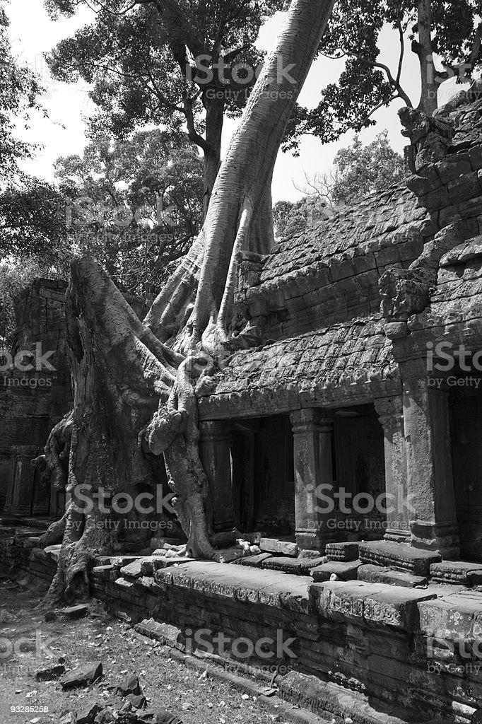 Preah Khan Temple stock photo