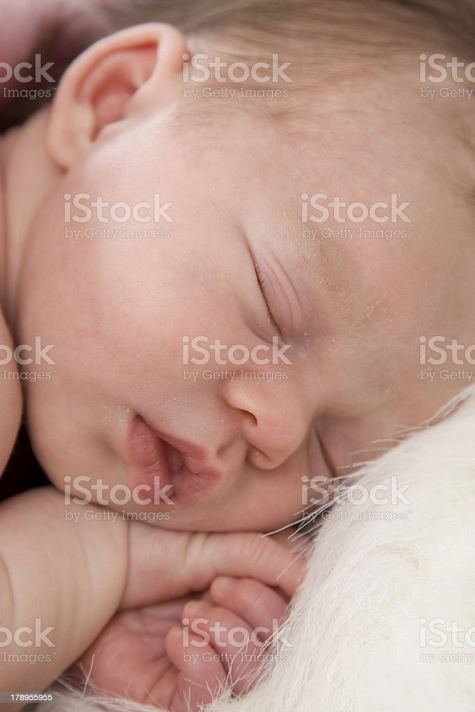 Precious newborn baby sleeping peacefully royalty-free stock photo