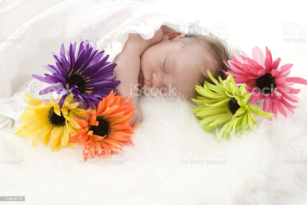 Precious Newborn Baby Sleeps Peacefully Amoung Flowers royalty-free stock photo