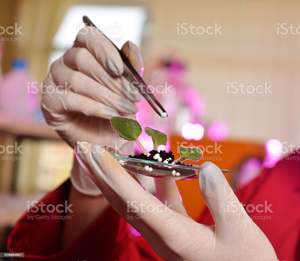 precision agriculture, chemistry in farming stock photo