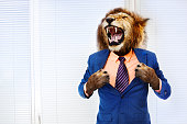 Furious angry man with head of lion roar wearing formal suit in the office