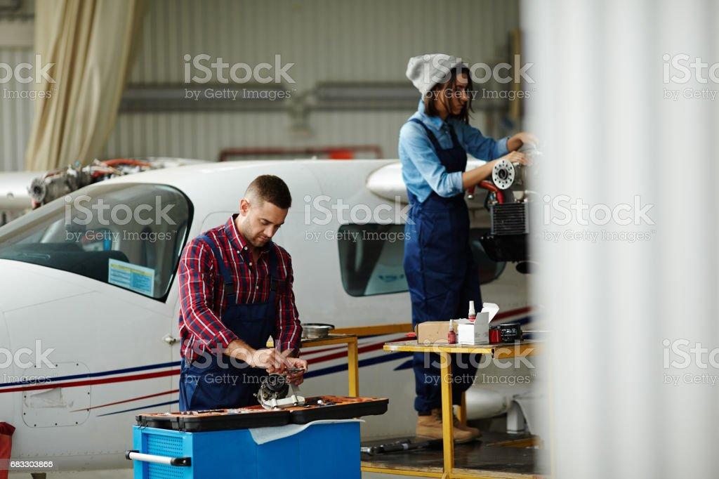 飛行機の飛行サービス ロイヤリティフリーストックフォト