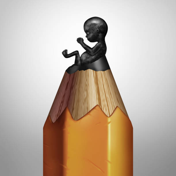 Pregnancy Planning Pregnancy planning concept and having a family plan symbol as a pencil with a lead tip shaped as a human fetus as a medical metaphor for concieving or healthy birth advice or designer baby as a 3D illustration. designer baby stock pictures, royalty-free photos & images