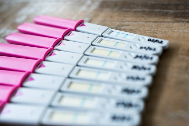 Pregnancy test, day by day stock photo