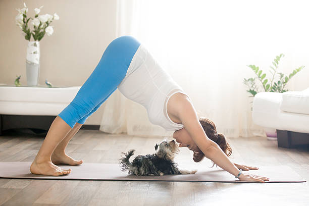 pregnant woman and puppy practicing dog yoga pose at home - bauch übungen stock-fotos und bilder