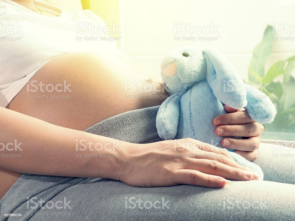 Pregnant woman playing with rabbit doll. Pregnancy concept stock photo