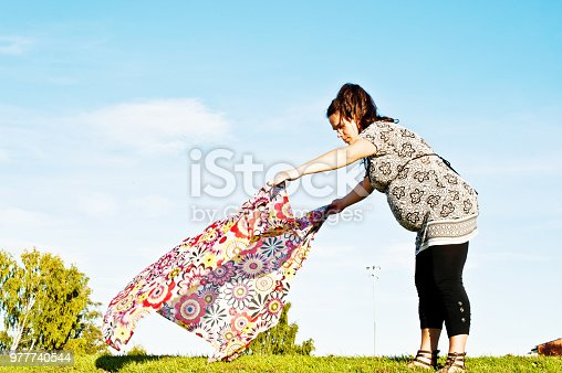 628409126istockphoto Pregnant Woman Prepare To Take A Rest In A Park 977740544