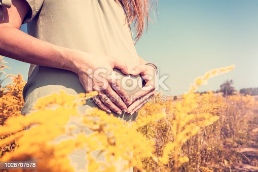 Pregnant woman relaxed in the field