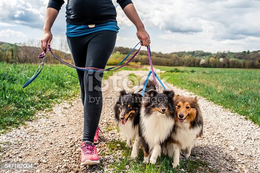 Pregnant woman walking her dogs