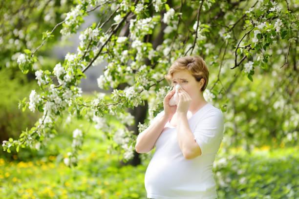 Mujer joven embarazada estornudar y toallitas nariz con servilleta durante la caminata en el parque de primavera. Temporada de gripe, rinitis fría. Personas alérgicas. - foto de stock