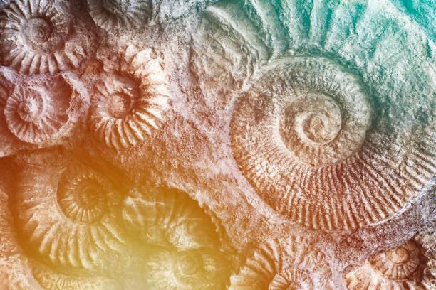 Prähistorische Natur Hintergrund. – Foto