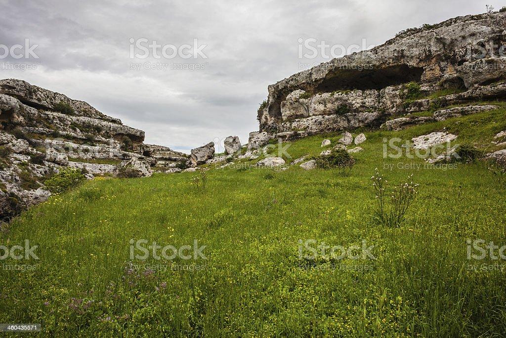 Prehistoric stock photo
