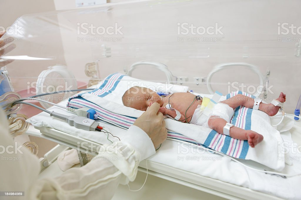 premature baby in incubator at the hospital royalty-free stock photo