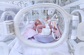 istock Premature Baby in Nicu 1288919436