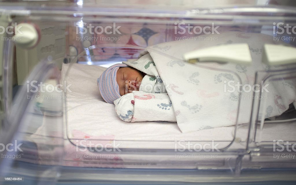 Premature biracial baby in hospital incubator stock photo