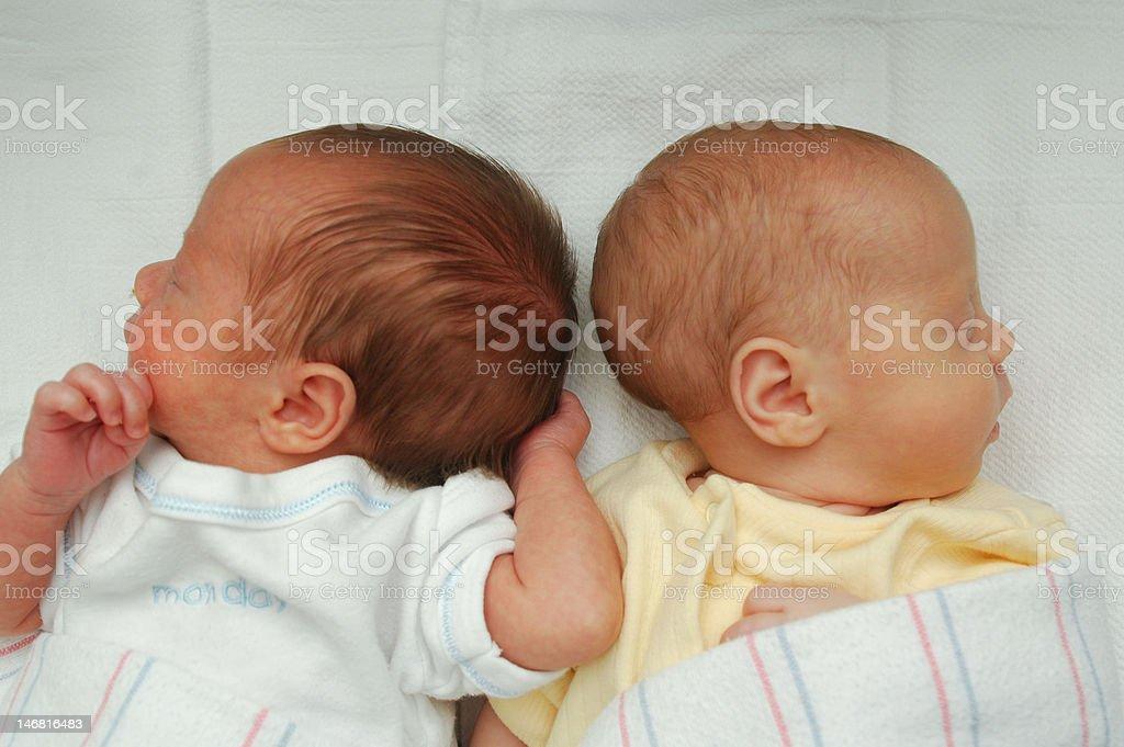 premature twins royalty-free stock photo