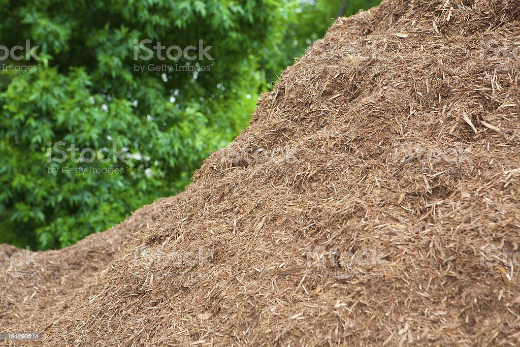Premium pile of hardwood mulch stock photo