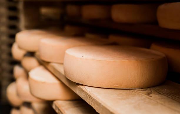 premium quality french cheese - ser comte zdjęcia i obrazy z banku zdjęć