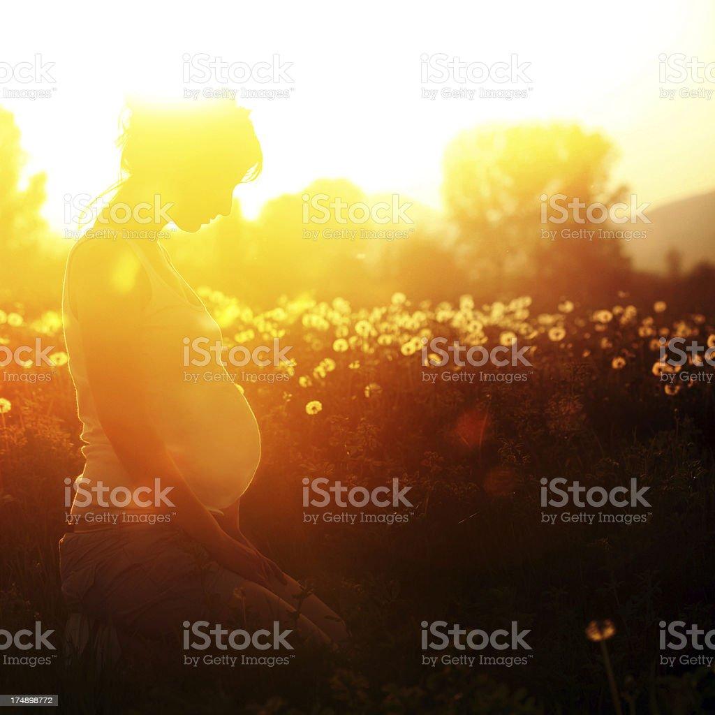 Prenatal yoga stock photo