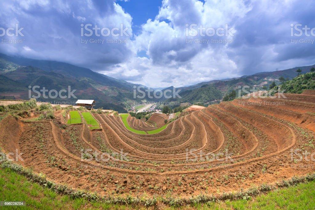 Preparación Antes Del Cultivo De Arroz Terrazas Campos Foto
