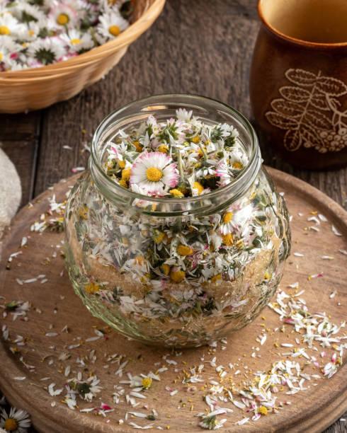 bereiding van een kruidensiroop tegen hoesten van gewone daisy bloemen - madeliefje stockfoto's en -beelden