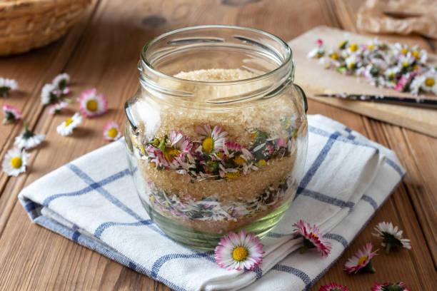 bereiding van een zelfgemaakte kruiden stroop van verse daisy bloemen en rietsuiker - madeliefje stockfoto's en -beelden