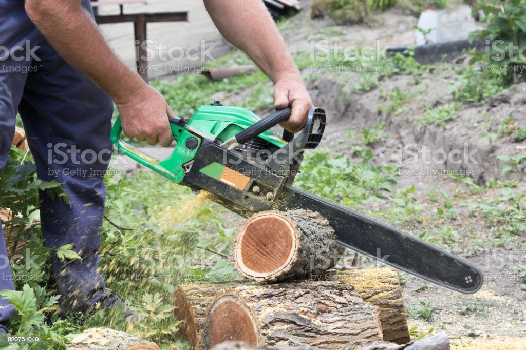 Preparation of firewood for the winter stock photo