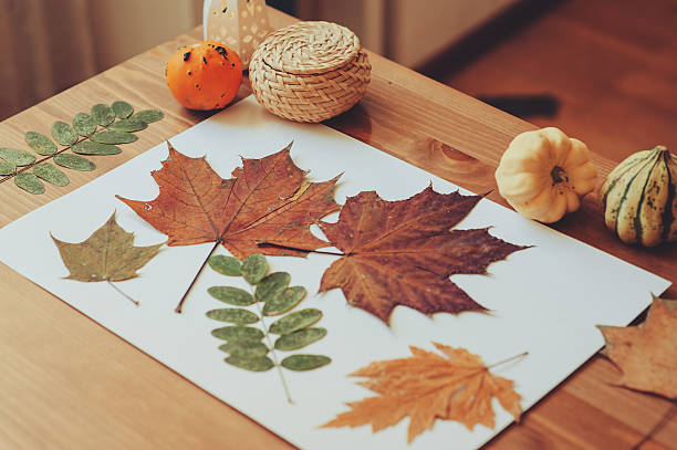 preparations for autumn craft with kids at home stock photo