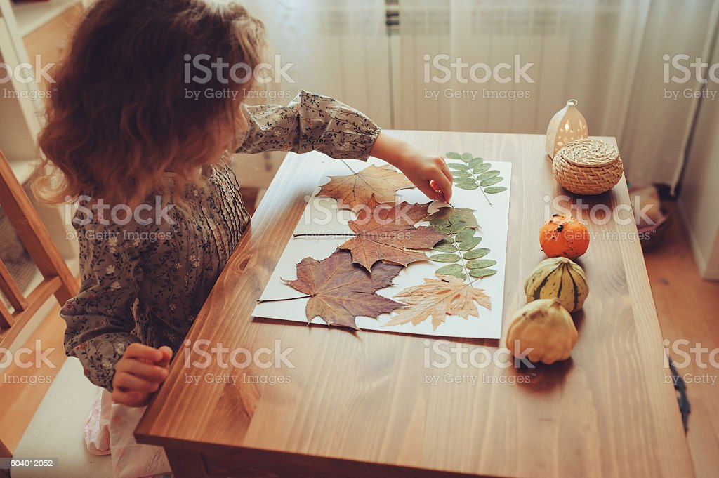 preparations for autumn craft with kids at home. stock photo